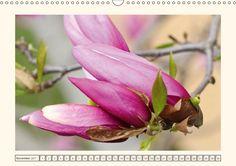 Mit diesem Kalender können Sie sich das ganze Jahr an der Blütezeit der Magnolien erfreuen. Die ansprechenden Aufnahmen werden edel dargestellt und dadurch der Schönheit dieser Pflanzen gerecht.