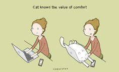 cat-toon-16.jpg