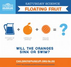 Floating Fruit Final Saturday Science