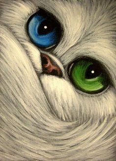 WHITE PERSIAN CAT BIG BLUE-GREEN EYES  by Cyra R. Cancel