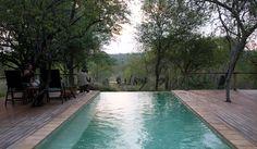 Infinity pool to bush sloping away
