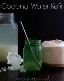 Coconut Water Kefir - The Coconut Mama