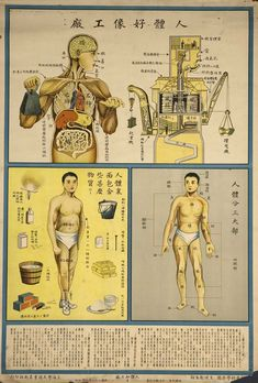 Chinese Public Health Poster - Human body is like a factory, 1933.