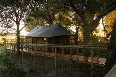 Chitabe Camp in Botswana
