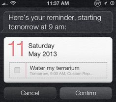 Use Siri to create custom repeating reminders - like a reminder to water your terrarium every 5 days! Check out this article to find out how...