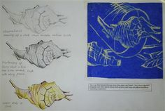 Year 10 sketchbook page, Warden Park school Develop your drawings with a range of media Gcse Art Sketchbook, Sketchbook Ideas, Sketchbook Inspiration, Sketchbooks, Sketching, Natural Form Artists, Natural Forms, Art Handouts, High School Art Projects