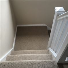 Wool loop type Carpet perfect for Stairs!