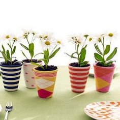Flower pots lined with old socks