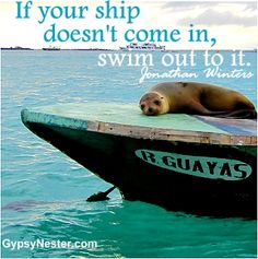 If your ship doesn't come in, swim out to it. Jonathan Winters. For more great quotes to pin to your friends: http://www.gypsynester.com/funny-inspirational-quotes.htm