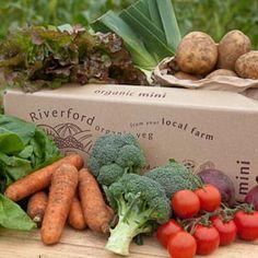 Riverford organic farms, Mini Vegbox