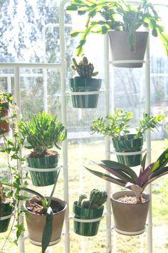 Com - go green with ikea Big Planters, Plants Are Friends, Instagram Giveaway, Indoor Plants, Indoor Gardening, Flowering Trees, Go Green, Garden Pots, Houseplants