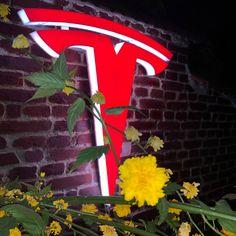 Custom made Tesla logo emblem sign Logo Smart, Tesla Logo, Smart Auto, Logo Emblem, Logo Sign, Easy Wall, Wall Signs, Save Energy, Cool Pictures