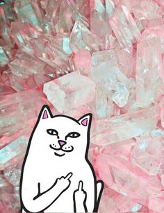 Pink crystal background with #middlefingercat #ripndip