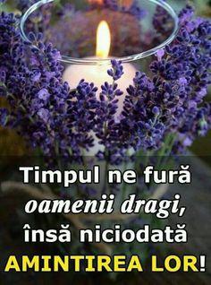 Utila, Positivity, Words, Plants, Om, Memories, Facebook, Memoirs, Souvenirs