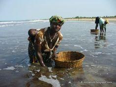 Kafountine: mariscadora (Senegal)