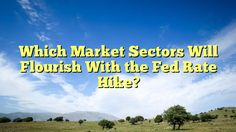 Which Market Sectors Will Flourish With the Fed Rate Hike? - https://twitter.com/pdoors/status/810458521674268672