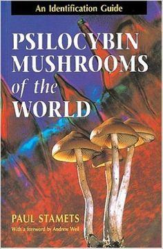 Amazon.com: Psilocybin Mushrooms of the World: An Identification Guide (9780898158397): Paul Stamets, Andrew Weil: Books