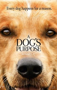 A Dogs Purpose Gets Trailerized And Posterized