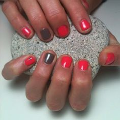 Glossed in Shellac's Tropix & Rubble