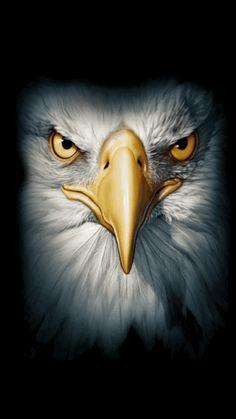 Eagle Faces Fleece Scarf Very Dramatic