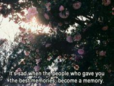 flowers, memory, sad, sadness, roses, memories, paradise, dark paradise,