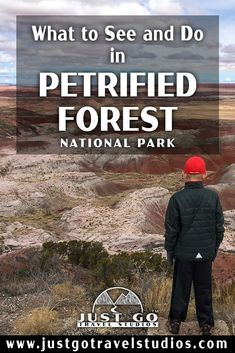 Our blog will help you plan your vacation to Petrified Forest National Park.  This great park in Arizona is amazing-don't miss it! Arizona National Parks, Arizona Trip, American National Parks, Arizona Travel, Sedona Arizona, Route 66 Trip, Us Road Trip, Petrified Forest National Park, Backpacking