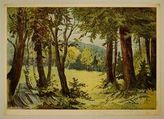8980/4 [Hintergrund Wald]