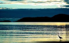 Amanhecer na praia do Jabaquara, em Paraty