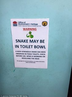 At least the one good thing about this public toilet in Garie Beach is if you find a snake in this toilet it's not venomous Australian Memes, Aussie Memes, Funny True Quotes, Funny Memes, Jokes, Memes Humor, Australia Funny, Australia Day, Meanwhile In Australia