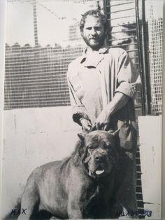 Mastino Napoletano Neo Mastiff, Cane Corso Mastiff, Mastiff Dogs, Alabai Dog, Neopolitan Mastiff, Presa Canario, Rare Dog Breeds, Giant Dogs, Guard Dog