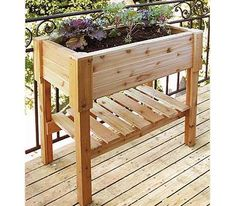 raised vegetable beds, raised gardening beds--- great for apartment community