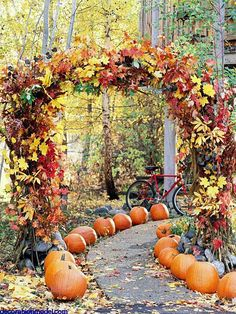 A garden path lined with pumpkins Don't forget that outlining flowerbeds in pumpkins can also help define garden pathways
