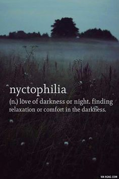 Nyctophiliac here. I like the darkness. The words, the lack of words, the lighting, the lack of lighting. I can sit in moonlight and love it. So not complete darkness. Just dark dark. The Words, Cool Words, Dark Words, New Words With Meaning, Pretty Words, Beautiful Words, Amazing Words, Interesting Words, Beautiful Poetry