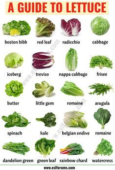Types of Lettuce: 21 Different Lettuce Types with ESL Picture – ESL Forums Salatsorten: 21 verschiedene Salatsorten mit ESL-Bild – ESL-Foren Types Of Vegetables, Fruits And Vegetables, Growing Vegetables, Cooking Tips, Cooking Recipes, Healthy Recipes, Types Of Lettuce, Types Of Fruit, Health And Nutrition