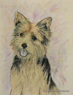 Soulmate Norwich Terrier Dog Art Pastel Drawing By Cori by terikor, $95.00