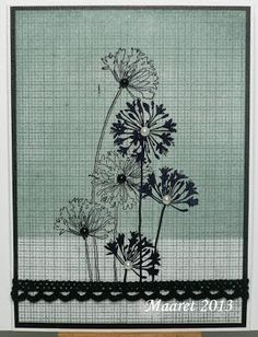 Stampendous - Agapanthus Cluster