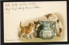 HELENA MAGUIRE ? ARTIST OLD POSTCARD CURIOUS CATS & BLUE & WHITE JUG 1898 UB
