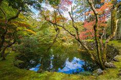 Places to see in Japan - The Saihoji Temple (Saihō-Ji) Moss Garden
