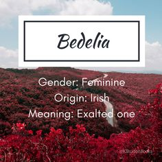 Bedelia - Baby girl's name Name Writing, Writing Help, Writing Prompts, Writing Tips, Female Character Names, Female Names, Character Prompts, Writing Characters, Name Suggestions