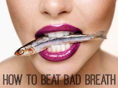Dentist Direct Dental Plans Dentistdirect On Pinterest