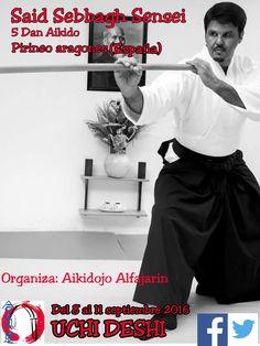 BUDOKAN blog de artes marciales : Uchi Deshi de Aikido Iwama Ryu en España