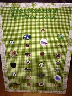 I wanted somewhere to display my fairs pins - just used with some fabric, a dollar store canvas, staples, and embroidery! Dollar Stores, Advent Calendar, Hands, Display, Crafty, Quilts, Embroidery, Holiday Decor, Fabric