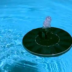 Now, you can transform your traditional birdbath into an enchanting, Solar-Powered Fountain in seconds! Place the Solar Garden Fountain pump … Bird Bath Fountain, Fountain Garden, Solar Powered Fountain Pump, Choses Cool, Stock Tank Pool, Small Ponds, Above Ground Pool, Garden Care, Fish Tank