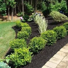 If you are working with the best backyard pool landscaping ideas there are lot of choices. You need to look into your budget for backyard landscaping ideas Boxwood Landscaping, Front Yard Landscaping, Backyard Landscaping, Landscaping Borders, Inexpensive Landscaping, Landscaping Design, Boxwood Garden, Natural Landscaping, Modern Landscaping