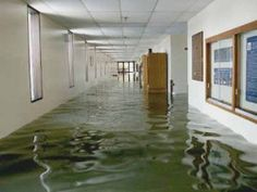 The office carpet may be ruined or stained, the walls bloated, and the furniture waterlogged – everything you'd find with flood damage.  But what should a business owner do? Here are three steps business owners should take after minor or major water damage affects their office.