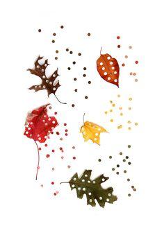 leaf confetti (mary jo hoffman)