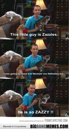 zazzles!!!! - The Big Bang Theory Memes