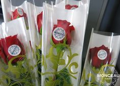 Rosa para el día de la Madre #diadelamadre