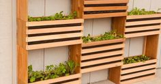 How To Make a Space-Saving Vertical Vegetable Garden. This guide to a modern, modular garden project works well in any space.