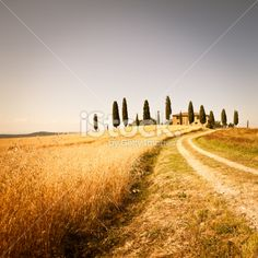 Farmhouse and Rural Road in Val d'Orcia, Tuscany Royalty Free Stock Photo